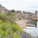 12791   Scenic view of the ruins of St Andrews Castle