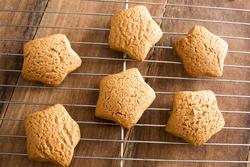 17191   Freshly baked star shaped Christmas cookies