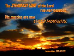 16917   Steadfast Love