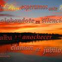 17528   Alabandote en Silencio