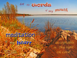 17546   Acceptable Words and Meditation