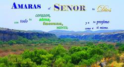 17504   Amaras al Senor con Corazon, Alma