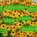 17570   Corazon Alegre Como Medicina