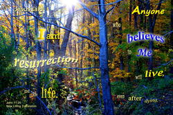 17511   The Resurrection and Life