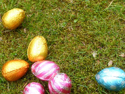17341   Easter egg hunt background with copy space