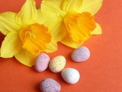 17346   Sugar coated mini quail Easter eggs