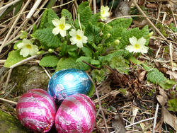 17352   Three colorful foil chocolate Easter eggs