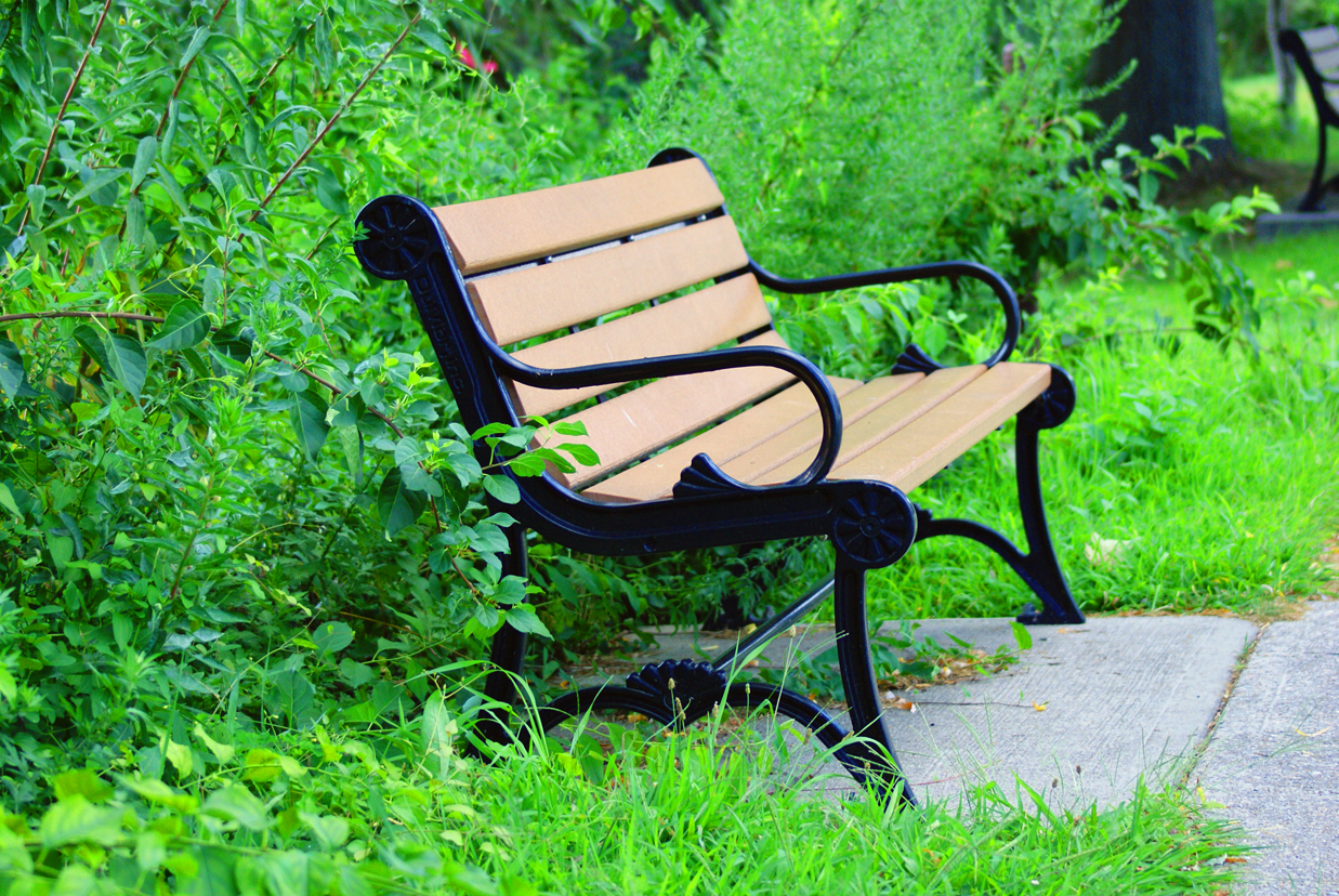 Free Stock Photo 3672-Park Bench II | freeimageslive for Park Background With Bench  146hul
