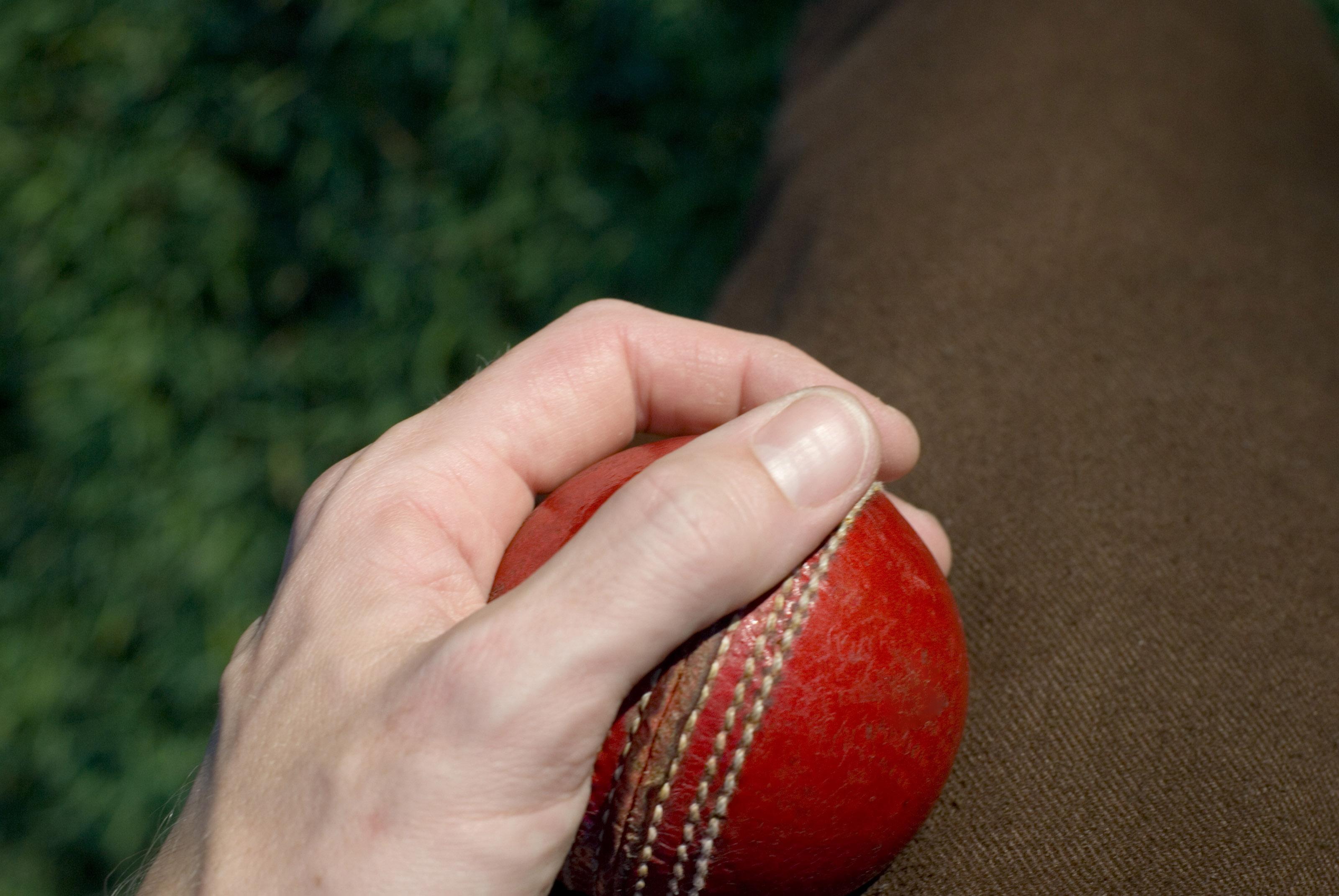 Best Bet On The 2020 IPL