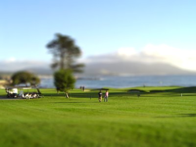 Golf course by fmanto